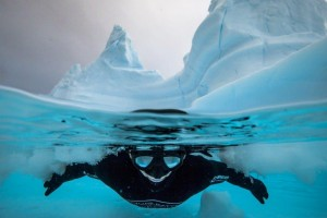 Dans un iceberg